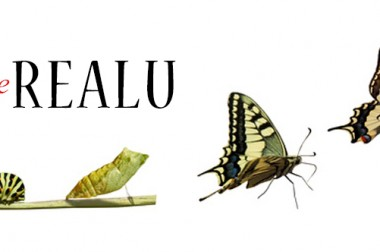 Discovering the RealU 2